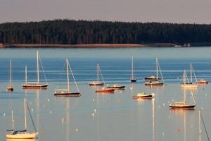 Hinckley Yachts in Harbour